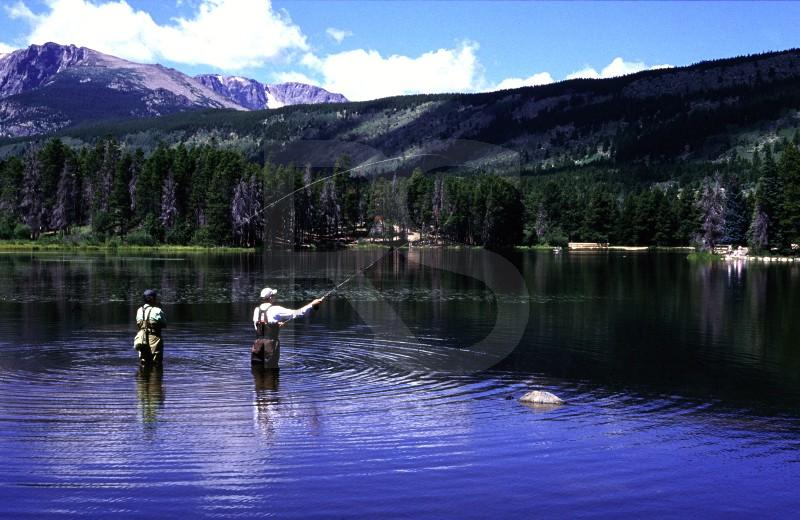 Fly Fishing On Sprague Lake, Rocky Mountain National Park
