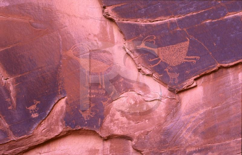 Monument Valley, Petroglyphs